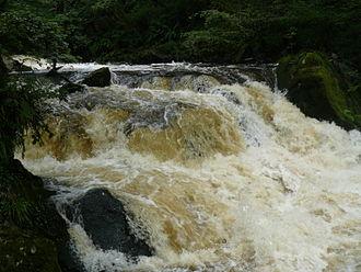 River Fowey - Golitha Falls