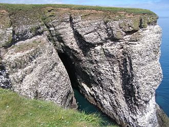 Biodiversity action plan - Fowlsheugh cliffs, Scotland, a protected seabird breeding habitat