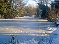 Frozen Moat Pond - geograph.org.uk - 1734437.jpg
