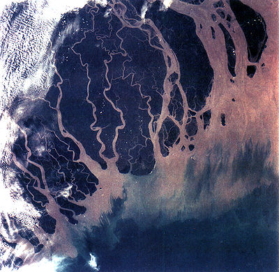 The Ganges river delta in India and Bangladesh is one of the most fertile regions in the world. Ganges River Delta, Bangladesh, India.jpg