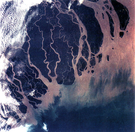 The Ganges Delta in India and Bangladesh is the largest delta in the world, and one of the most fertile regions in the world. Ganges River Delta, Bangladesh, India.jpg