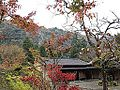 "Garden of ""Auberge Kaedenoki"" and Shin-Yabakei Valley.JPG"