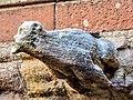 Gargouille de la cathédrale. (7).jpg