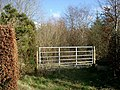 Gate with gorse - geograph.org.uk - 350660.jpg