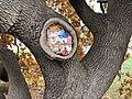 Gemälde im Baum.jpg