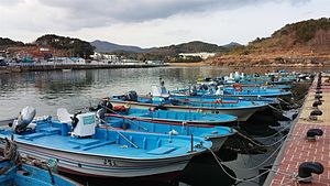 Gijang County - Gijang fishing village