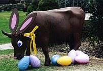 Gladys as a chocolate easter bunny