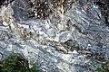 Gneiss (Precambrian; Harriman Reservoir roadcut, Route 9, southern Vermont, USA) 9.jpg
