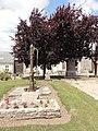 Goudelancourt-lès-Pierrepont (Aisne) pompe du village et arbre de la liberté.JPG
