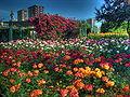 Goztepe Park 06773.jpg