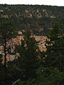 Grand Canyon Widforss trail. 15.jpg