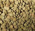 Green lentils.jpg