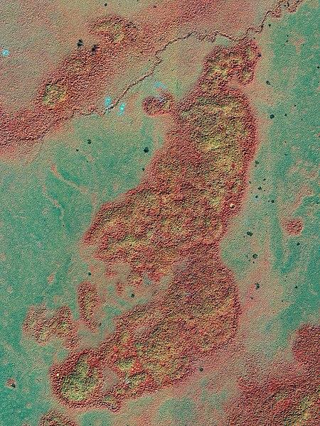 File:GuatemalaBajo IKO 20021215.jpg