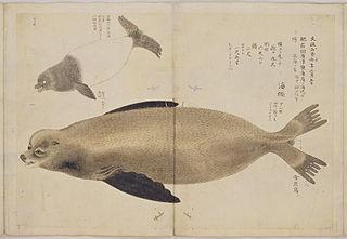 image of Hasegawa Settan from wikipedia