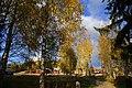 Høst ved Boranger - panoramio.jpg