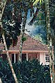 Habitation au Jardin de Balata en Martinique.jpg