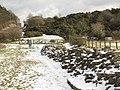 Hadrian's Wall (6) - geograph.org.uk - 1724614.jpg