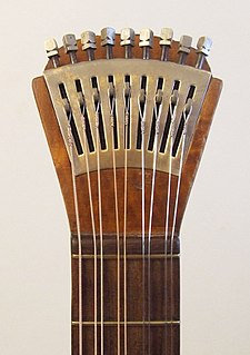 two or more adjacent strings on a musical instrument