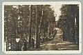 Harjutie, Runebergin kumpu, Nervanderin kumpu, 1910s PK0168.jpg