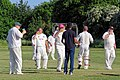 Hatfield Heath CC v. Netteswell CC on Hatfield Heath village green, Essex, England 35.jpg