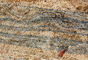Sand - Heavy minerals (dark) in a quartz beach sand (Chennai, India).