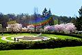 High Park in Bloom.jpg