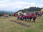 File:Highland games tug of war 2.JPG