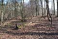 Hildener Heide 2016 049.jpg