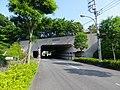 Hinatane-Tunnel.jpg