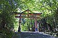 Hiyoshi-taisha03s4592.jpg
