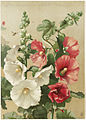 Hollyhocks (Boston Public Library).jpg