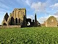 Hore Abbey, Caiseal, Éire - 46585661551.jpg