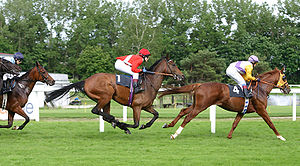Keno horse racing
