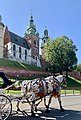 Horses, Wawel Cathedral, Kraków, Poland, 2019.jpg