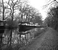 Houseboats at Woodham on the Basingstoke Canal - geograph.org.uk - 434605.jpg