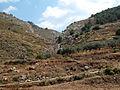 Hydra hike (4694150411).jpg
