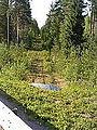 Inlandsbanan-rw26-85.JPG