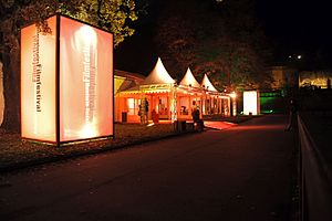 International Filmfestival Mannheim-Heidelberg