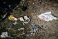 Iranian missile shot down Ukrainian Boeing 737-800 2020-01-08 53.jpg