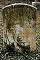Ivy Hill-5011.jpg