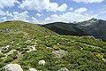 J28 823 Collado de las Chorreras, Alto de Castilfrío.jpg