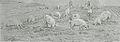 Jacque Charles - Charcoal - Troupeau de porcs dans un paysage - 35x13cm.jpg