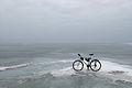 Jalgrattaga Peipsi järve jääl.JPG