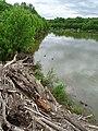 James River Scene - Richmond - Virginia - USA - 02 (47003345774).jpg