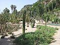 Jardins Mossèn Costa i Llobera, vista general.jpg