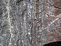 Jaspilite banded iron formation (Soudan Iron-Formation, Neoarchean, ~2.69 Ga; Rt. 169 roadcut between Soudan & Robinson, Minnesota, USA) 10 (19040040695).jpg