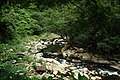 Jingualiao Stream Fish and Fern Trail (坪林金瓜寮魚蕨步道) - panoramio.jpg