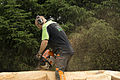 Jonnychainsaw during a chainsaw art demonstration in Scotland 20.jpg