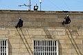 Jornadas Policiales de Vigo, 22-28 de junio de 2012 (7420049872).jpg