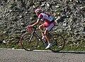 José Luis Carrasco - Vuelta 2008.jpg